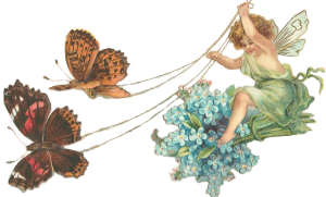 FairyBflys